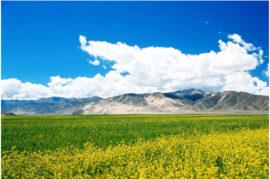 Central Tibet loop tour