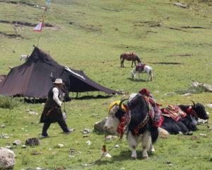 Tibet travel condition during Coronavirus